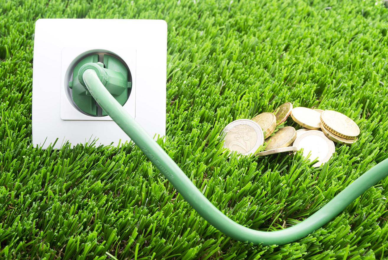 Energy Concept, Coins Plug and Outlet in Grass